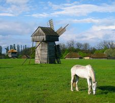 Free Rural Landscape Royalty Free Stock Image - 13796706