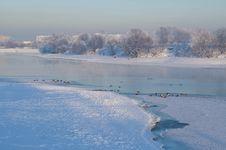 Free Winter Landscape Stock Photo - 13796730