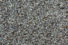 Free Background Of Poppy Seeds Royalty Free Stock Image - 13797906