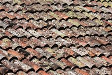 Free Red Tile Stock Photo - 13798450