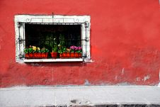 Free Window With Plants And Flowers Stock Photos - 13798863