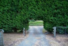 Free Hedge Gate Stock Photography - 13799662