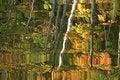 Free Autumn Lake Reflection Stock Photo - 1386360