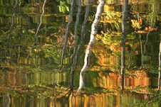 Free Autumn Lake Reflection Stock Photo - 1386360