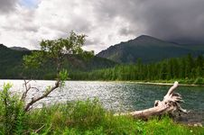 Green Lake, Log And Mountains. Stock Images