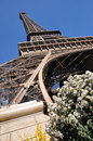 Free Eiffel Tower Royalty Free Stock Images - 13804229