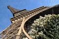 Free Eiffel Tower Royalty Free Stock Image - 13804236