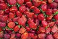 Free Strawberry Background Royalty Free Stock Photos - 13809358