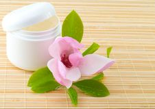 Free Spa Composition With Magnolia Royalty Free Stock Image - 13800146