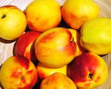 Free Fresh Nectarins Royalty Free Stock Image - 13801966