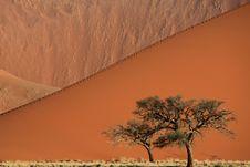 Free Sand Dune Royalty Free Stock Photo - 13803445