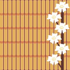 Free Japanese Cherry Brunch Stock Image - 13804421