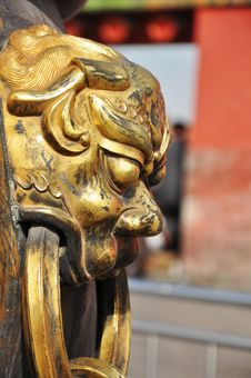 Free Golden Lion Royalty Free Stock Photos - 13805748