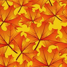 Free Seamless Autumn Maple Leaf Pattern Royalty Free Stock Photography - 13806567