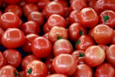 Tomatoes At The Market For Sale Royalty Free Stock Photo