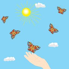 Free Butterfly In The Sky And Hand Royalty Free Stock Photo - 13807985