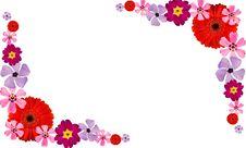 Free Flower Frame 2 Stock Image - 13808551