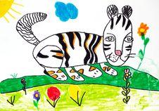 Free Striped Cat Stock Image - 13809601