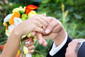 Free Newlywed Couple Holding Hands. Royalty Free Stock Photography - 13810767