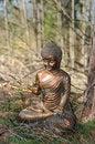 Free Shiva II Stock Photo - 13815350