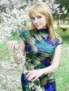 Free Girl In Spring Garden Stock Images - 13816304
