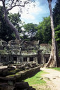 Free Angkor Wat, Cambodia Stock Photo - 13819090