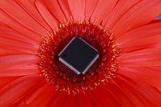 Free Green Technology Concept Stock Photos - 13810643