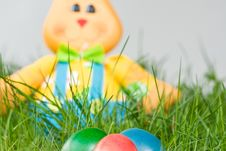Free Easter Bunny Stock Image - 13810801