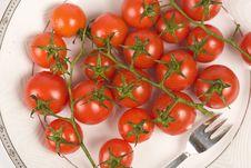 Free Tomato Royalty Free Stock Image - 13810856