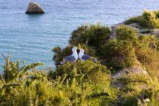 Free Seagulls In Love,praia Da Rocha Beach,portugal Stock Photos - 13811833