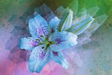 Free Styled Floral Picture Stock Photos - 13813433