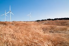 Free Wind Mill And Grass Royalty Free Stock Image - 13813746