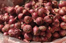 Free Red Onion Group Local Stock Photos - 13813783