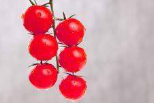 Free Tomates Stock Photos - 13814233