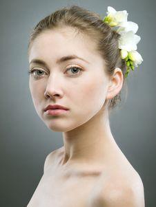 Free Girl With Freesia Royalty Free Stock Photo - 13814555