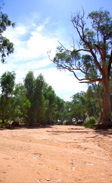 Free Outback NSW Dried River Stock Photography - 13815272
