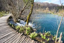 Free Plitvice National Park Stock Image - 13816351