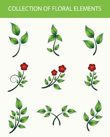 Free Collection Of Floral Elements Royalty Free Stock Photography - 13816687