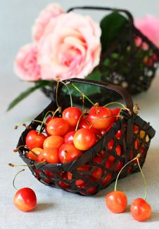 Free Fresh  Cherries Stock Photo - 13817090