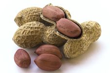 Free Peanuts Stock Photos - 13818143