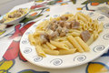 Free Pasta Penne And Pork Royalty Free Stock Photos - 13822168