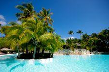Free Swimming Pool Stock Photo - 13820430