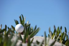 Free Golf Ball Royalty Free Stock Photo - 13820955