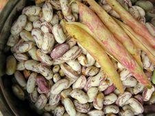 Free White Kidney Beans Three Royalty Free Stock Photos - 13822758
