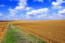 Free Plowed Field Conceptual Image. Stock Image - 13823071