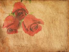 Free Grunge Paper With Red Roses Royalty Free Stock Photography - 13823527