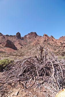 Free Volcanic Landscape - Mount Teide, Tenerife Stock Photos - 13823663