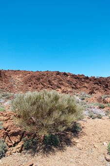 Volcanic Landscape - Mount Teide, Tenerife Royalty Free Stock Photos