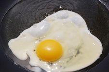 Frying Egg Stock Photo