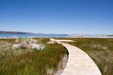 Free Mono Lake Stock Photo - 13825910